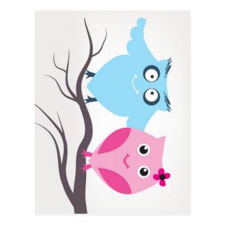 Cute birds couple in love postcard