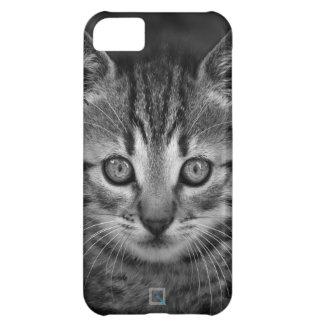 Cute black and white cat, iPhone 5c Case