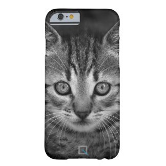 Cute black and white cat, iPhone 6/6s Case