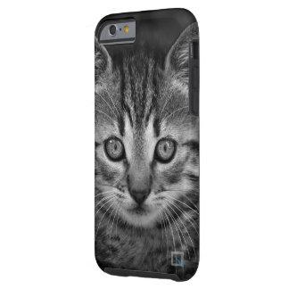 Cute black and white cat, iPhone 6/6s Case