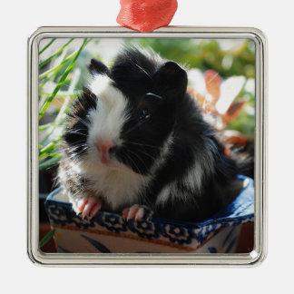 Cute Black and White Guinea Pig Silver-Colored Square Ornament