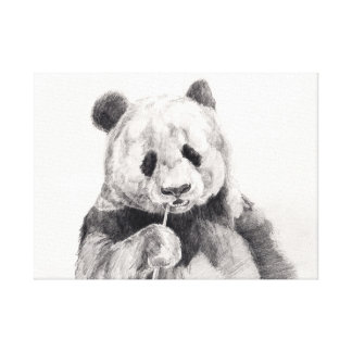 Cute Black and White Panda Illustration Canvas Print