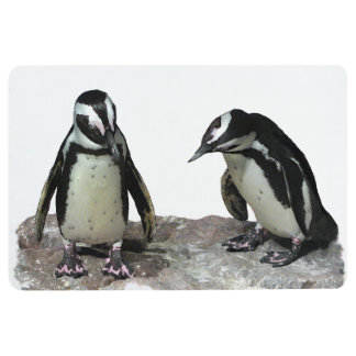 Cute Black and White Penguin Birds Floor Mat