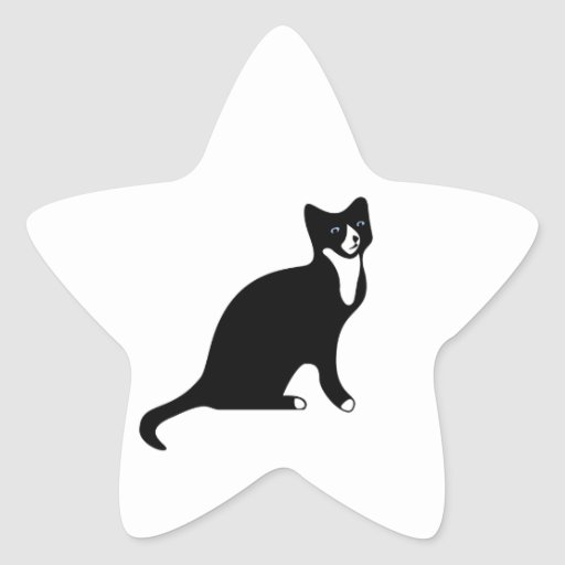 Cute Black and White Snowshoe Cat Star Stickers