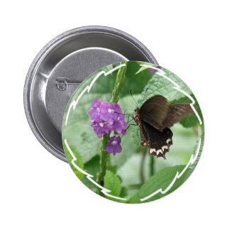Cute Black Butterfly Button