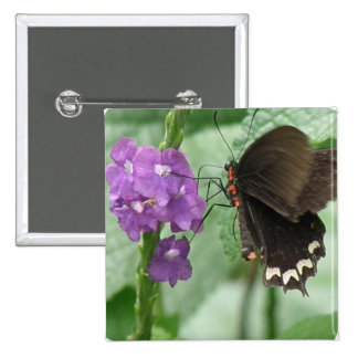 Cute Black Butterfly Pin