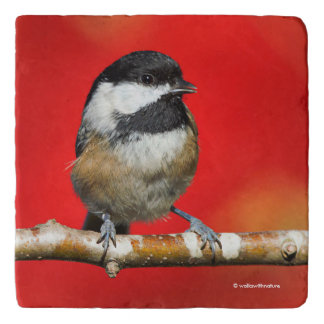 Cute Black-Capped Chickadee with Red Autumn Leaves Trivet