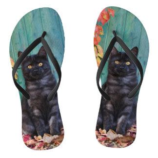 Cute Black Cat Kitten with Blue Door Photo - flips Flip Flops