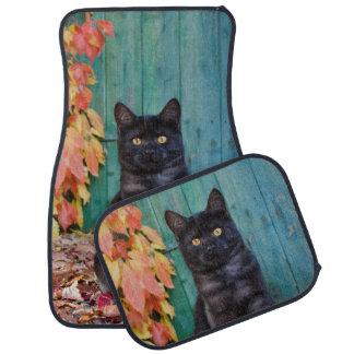 Cute Black Cat Kitten with Red Leaves Blue Door . Car Mat