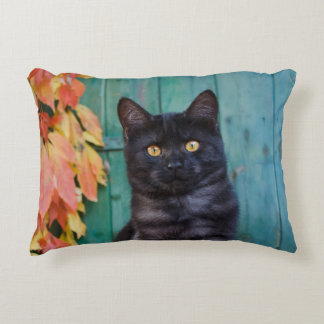 Cute Black Cat Kitten with Red Leaves Blue Door .- Decorative Pillow