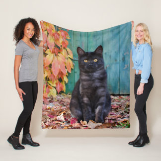 Cute Black Cat Kitten with Red Leaves Blue Door .. Fleece Blanket
