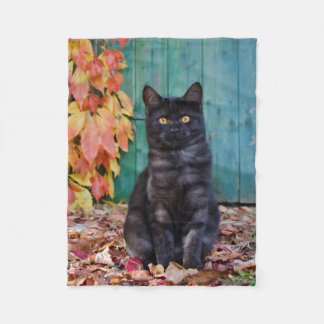 Cute Black Cat Kitten with Red Leaves Blue Door ,, Fleece Blanket