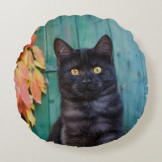 Cute Black Cat Kitten with Red Leaves Blue Door :: Round Pillow
