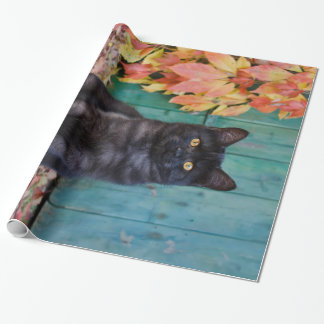 "Cute Black Cat Kitten with Red Leaves Blue Door """" Wrapping Paper"