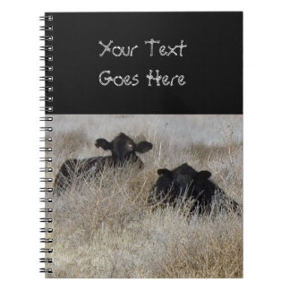 Cute Black Cow Calves Notebooks