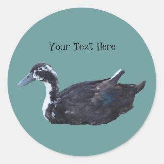 Cute Black Duck Farm Animal Sticker