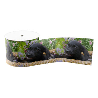 Cute Black Labrador Retriever Dog Puppy Pet Photo Grosgrain Ribbon