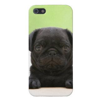Cute Black Pug Puppy Phone Case