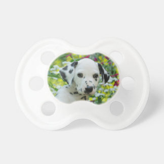 Cute black spotted Dalmatian Baby Dog Puppy Photo Pacifier