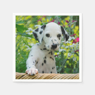 Cute black spotted Dalmatian Baby Dog Puppy Photo Paper Napkins