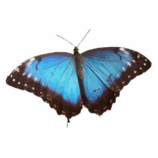 Cute Blue Butterfly Animal Office Party Shower Art Photo Sculpture Keychain