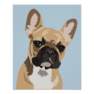 Cute Blue French Bulldog | Frenchie Poster