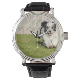 Cute Bobtail Sheepdog Wrist Watch