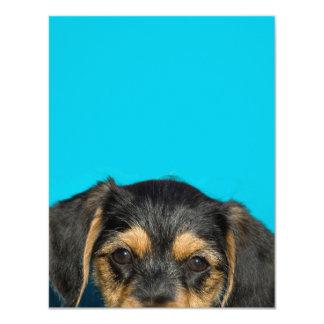 "Cute Borkie Puppy 4.25"" X 5.5"" Invitation Card"