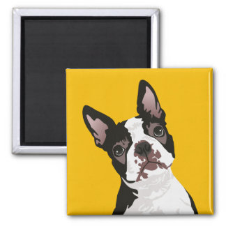Cute Boston Terrier Dog for Boston Terrier Owner Magnet