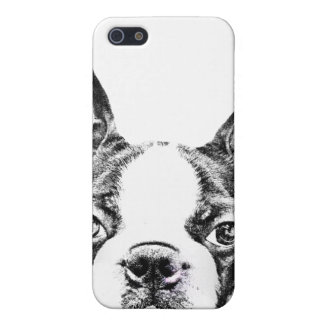 Cute Boston Terrier dog iPhone 5 Cover