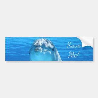 Cute Bottlenose Dolphin underwater Bumper Sticker