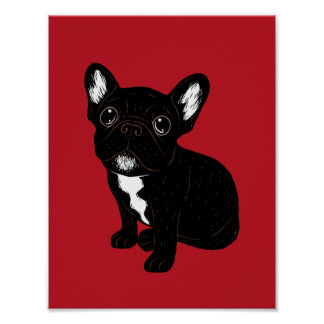Cute Brindle Frenchie Puppy Poster