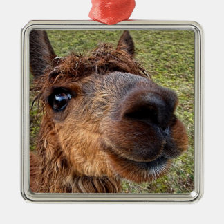 Cute Brown Alpaca Ornament
