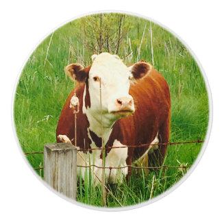 Cute Brown Cow 4Jojo Ceramic Knob