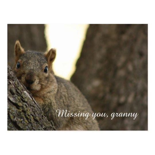 Cute brown squirrel postcard for grandma