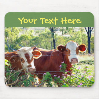 Cute Brown & White Cows Cattle Heifers Bull Horns Mouse Pad