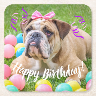 Cute Bulldog Happy Birthday Square Paper Coaster