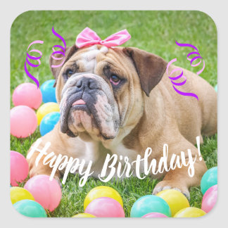 Cute Bulldog Happy Birthday Square Sticker