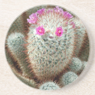 Cute Cactus w/ Pink Flower Face and Cacti Friends Beverage Coasters