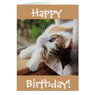 Cute Calico Cat Birthday Card, purr-fect day! Greeting Card