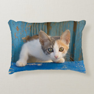 Cute Calico Cat Kitten Funny Curious Eyes Photo -/ Accent Pillow