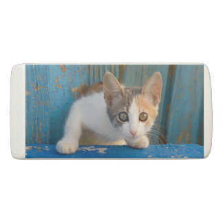 Cute Calico Cat Kitten Funny Curious Eyes Photo ; Eraser