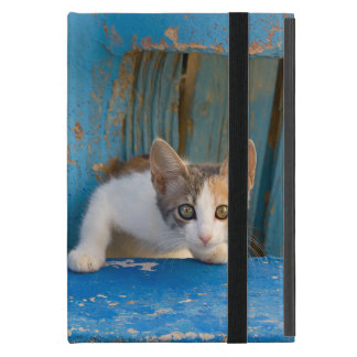 Cute Calico Cat Kitten Funny Curious Eyes Photo -_ iPad Mini Cover