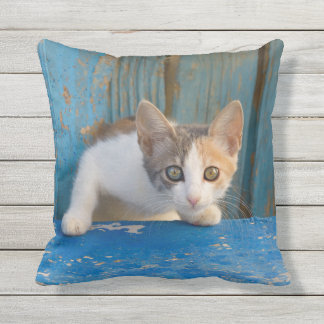 Cute Calico Cat Kitten Funny Curious Eyes Photo - Outdoor Pillow