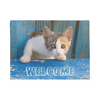 Cute Calico Cat Kitten Funny Curious Eyes  Welcome Doormat