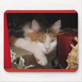 Cute Calico Cat Mousepad