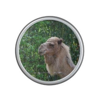Cute Camel Bluetooth Speaker