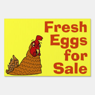 Fresh eggs for sale gifts fresh eggs for sale gift ideas for Cute stuff for sale