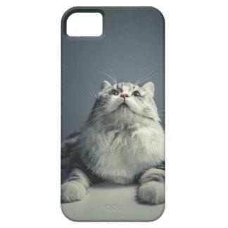 Cute Cat 2 Mobile Phone Case