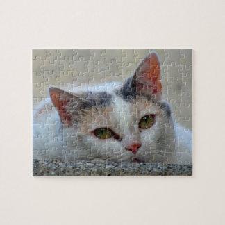 Cute Cat Close-up Photo Difficult Puzzles